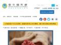 衛生福利部官網《育兒津貼及托育準公共化》專區 pic